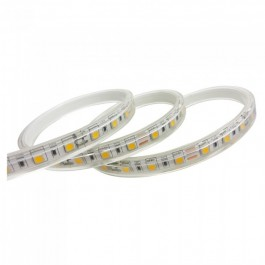 LED Strip 5050 60 LED 24V IP65 6400K