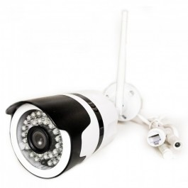 1080P Indoor & Outdoor Camera With Eu Power Plug